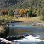 Flyfishing at Ridgway State Park