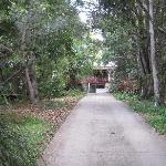 Foto de Mt Warning Bed and Breakfast Retreat