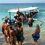 Photo of Manta Dive Gili Air