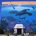 Scuba-Fun Dive Center