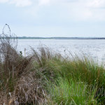 Lake Jesup