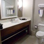 Foto van Holiday Inn Express & Suites Terre Haute