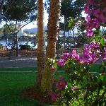 Photo of Grupotel Santa Eularia Hotel