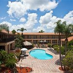 Holiday Inn &amp; Suites near Busch Gardens - USF
