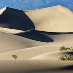 Mesquite Flat Sand Dunes