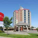 ‪Ramada Lethbridge‬