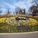  the famous flower clock