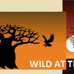  Wild At Tuli Safaris