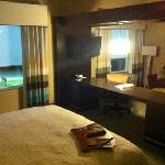 Hampton Inn & Suites Denison의 사진
