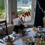  &quot;Hamish&quot;  at our lovely breakfast table.
