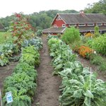Heritage Farm and Preservation Gardens