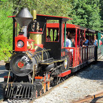 The steam train takes its passengers along the backside of the farm and through a tunnel at the