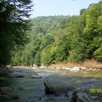  View of the Loyalsock Creek