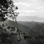 Cameron Highlands Trail No. 3