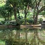 Jardin Botanico de Medellin