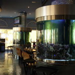 Live fish water tank in the restaurant