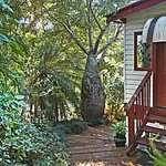 ‪Mt Warning Bed and Breakfast Retreat‬