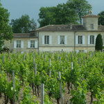 Bordeaux 360 - Wine Tasting Tours