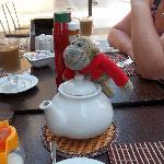 monkey at altinkum tea rooms