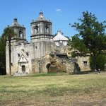 Alamo Sightseeing Tours