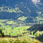  View of Grindelwald valley from First