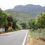 Beautiful road up to Kodai - beginning of the ghats