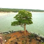 bekal beach, photo from the fort.