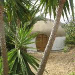  Yurts from outside.