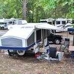Foto de Cooper Creek Resort and RV Park