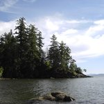                   Larrabee State Park