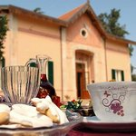 Bed &amp; Breakfast AlbaRosa 