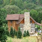 Foto de Boyd Mountain Log Cabins