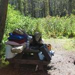 Bilde fra Twin Lakes Campground