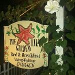 The Gilded Lily resmi