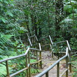Gunung Raya