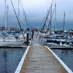  The Marina!