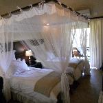 Foto de Shiduli Private Game Lodge