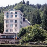 Hotel Des Sapins