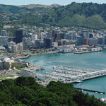 beautiful wellington