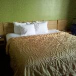 Very comfortable bed; interesting lime-colored wall paint