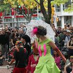  honk fest davis square II