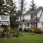 Willows Motel resmi