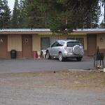 Foto de Whispering Pines Motel
