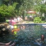 The Pool Area at Gumbo Limbo