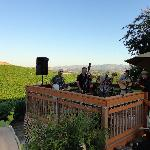Bitner Vineyards B&B의 사진