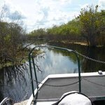 Foto di Camp Holly Fishing & Airboats