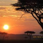 Stunning safari sunsets