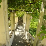 Giardino della Minerva