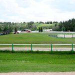 ‪Whitemud Equine Centre‬