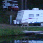 A visitor coming to camp